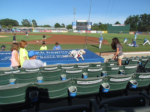 Preparing at TicketReturn.com Field -- Myrtle Beach, SC, June 30, 2018