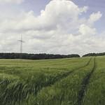 2017-06-06_12-31-52 Pano Landschaft Schleswig-Holstein