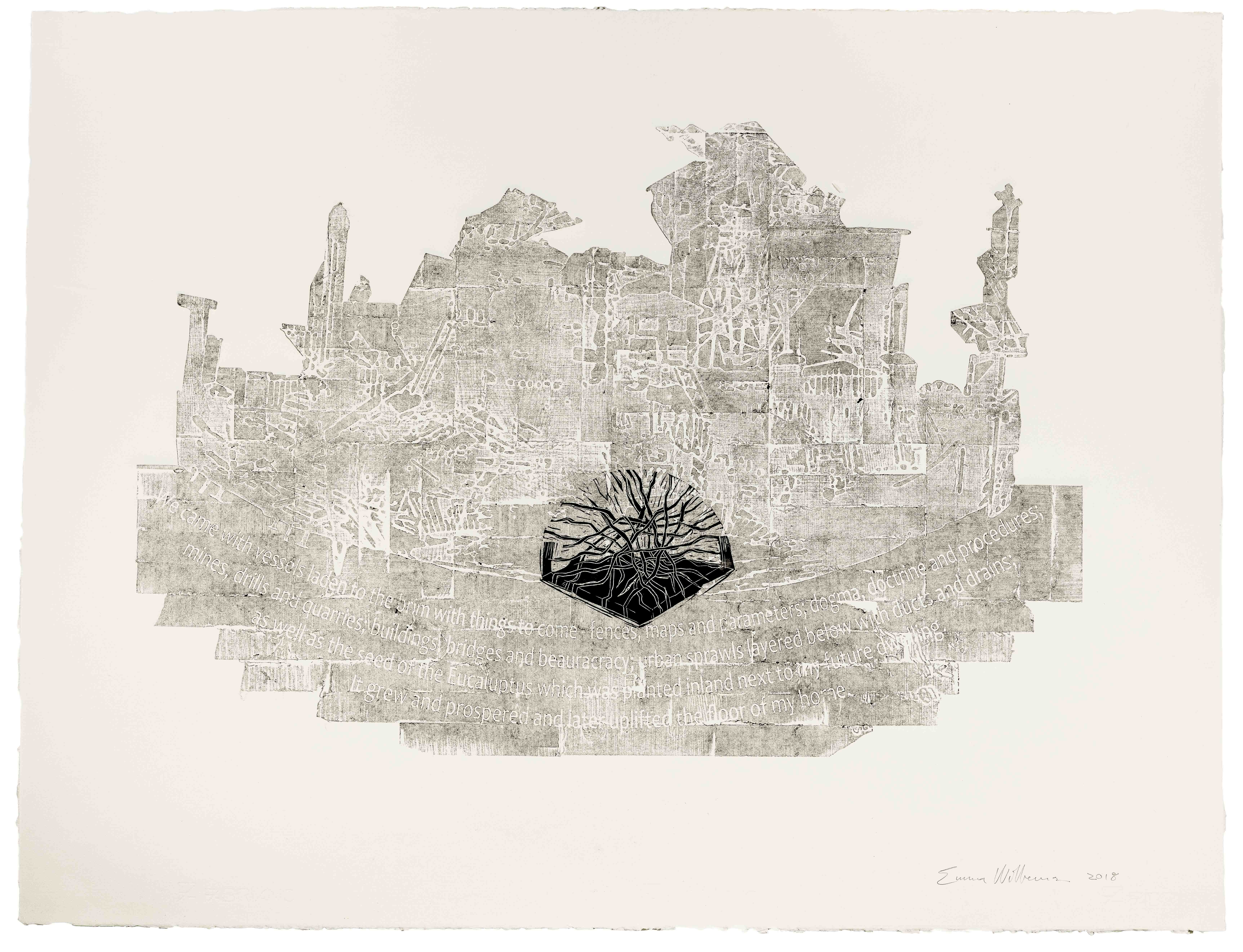 Fences, maps and parameters _ 1030x820mm _ Collagraph and linocut on Fabriano Rosapina
