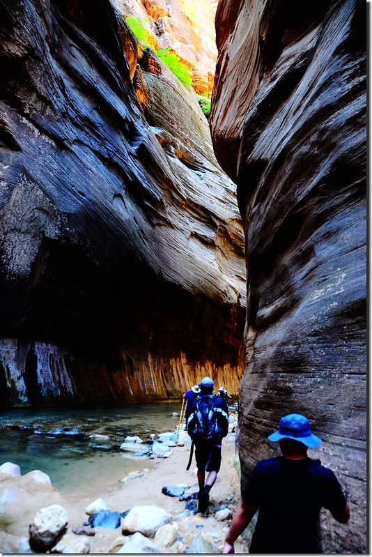 The Narrows, Zion National Park (48)