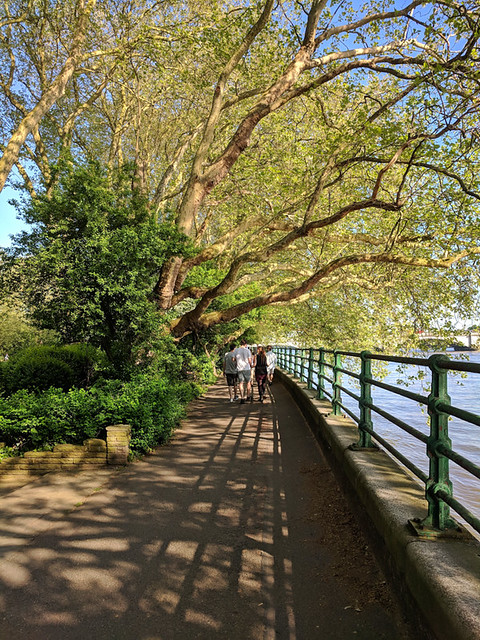 Bishop's Park River Walk