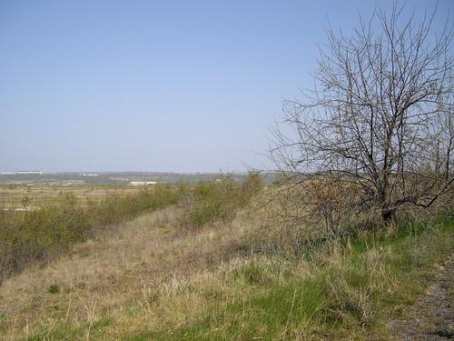 2010-04-25_15.37_22