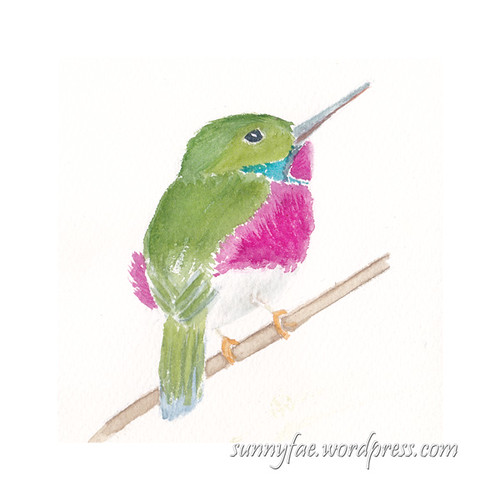 hummingbird sitting on a twig