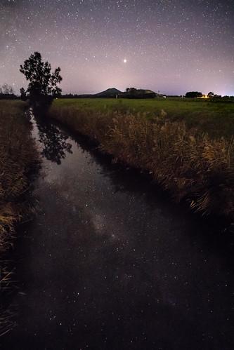 Lights in the dark water