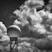 Radar Love by Mike Schaffner