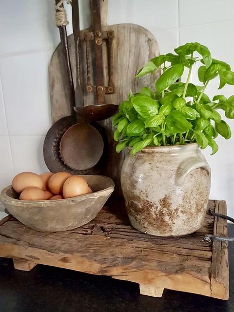 Schaal met eieren Basilicum plantje