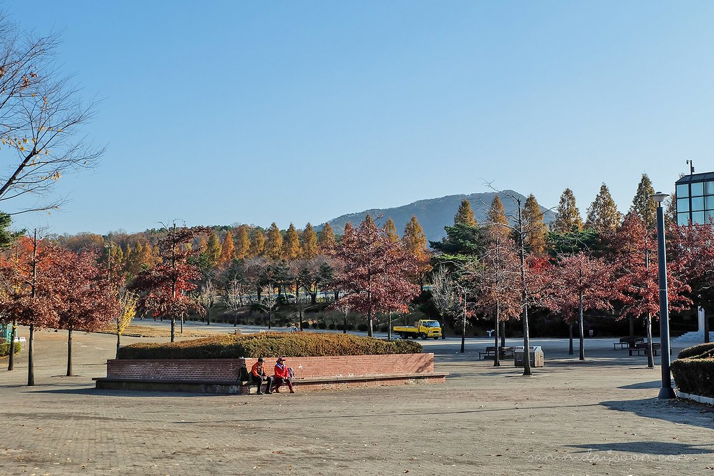 elder_seoul_grand_park