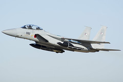 14. JASDF F15J