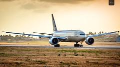 Etihad Cargo | A6-DDD | Boeing 777-FFX | BGI