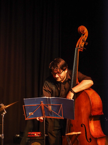 Double bass player (kasiainwales)