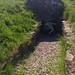 Hetty Pegler's Tump Long Barrow