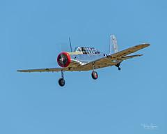 Alex Munro 1946 Consolidated Vultee BT-13B (SNV-2) C/N 2459