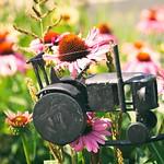 20180715-152359 - Garden Deko Flower Bokeh - festgefahren ;-)