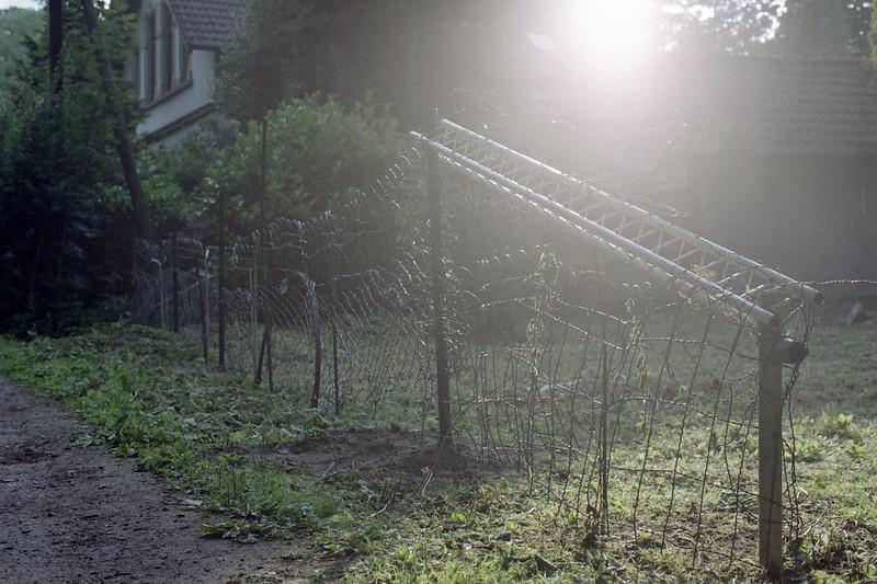 [analog] Delmenhorster Graft im Sonnenlicht (2)