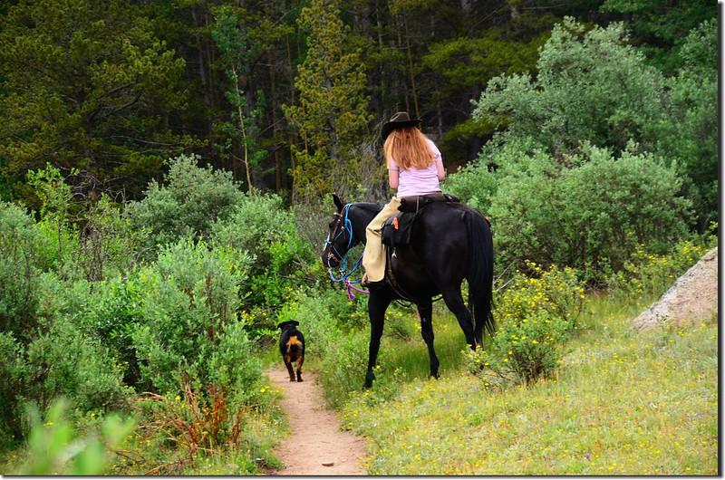 Rider and dog (2)