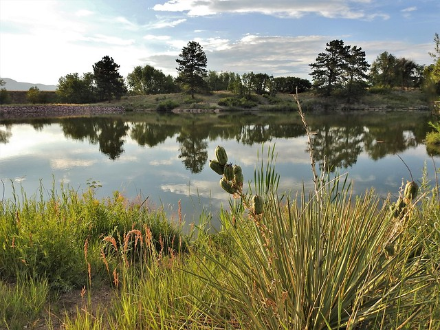 Lakeside at dusk...