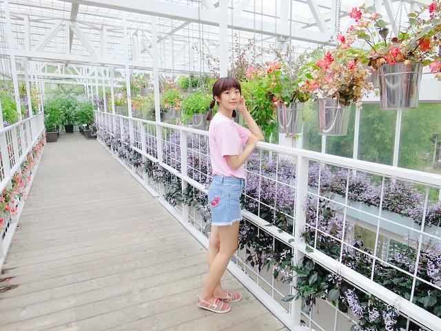 香草菲菲 (28)