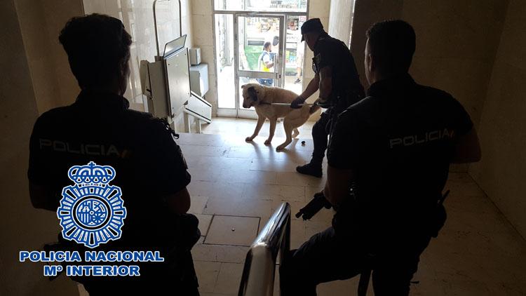 2018-07-13 Algeciras intervención con perros (1)4