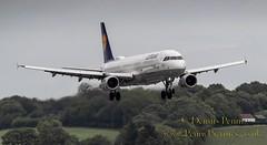 D-AIRE Lufthansa Airbus A321 (1)