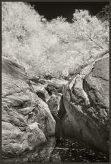 Sabino Canyon IR #53 2018; Small Cascade