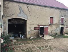 IMG_3063 - Photo of Boux-sous-Salmaise