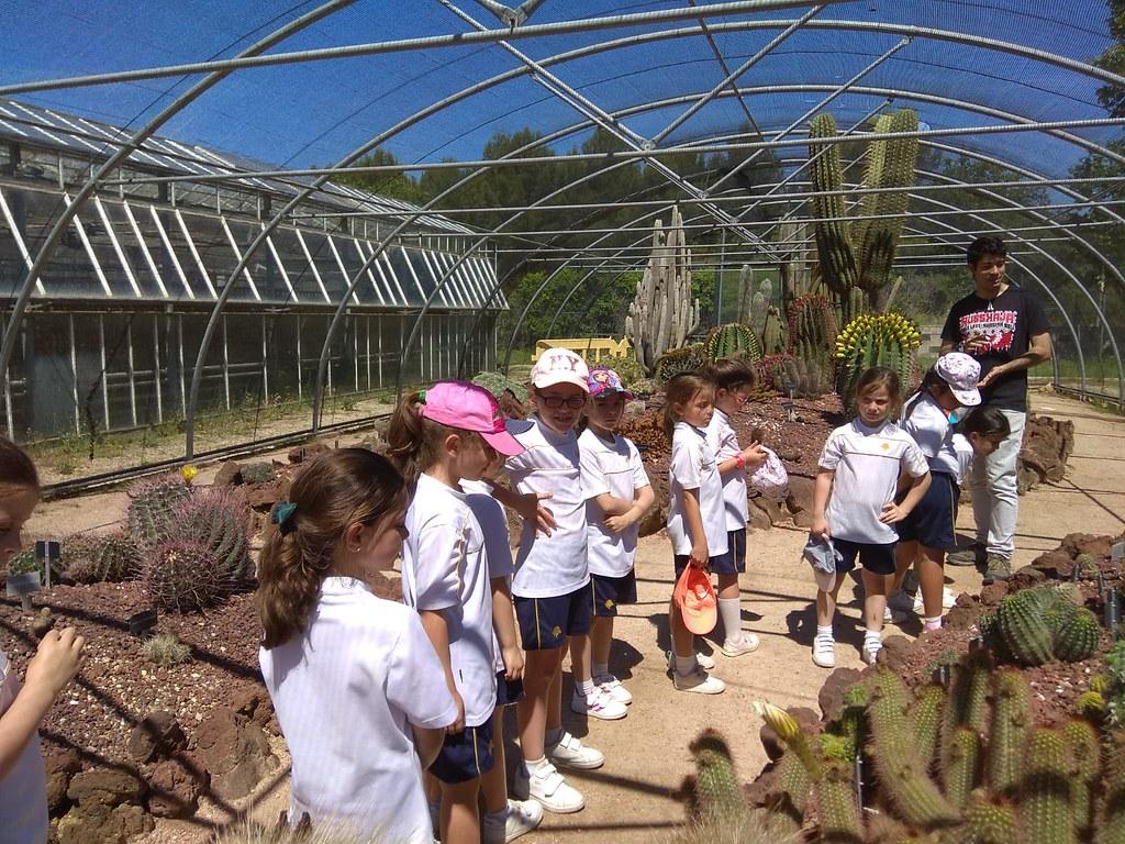 1º Primaria visita el Jardín Botánico de Alcalá