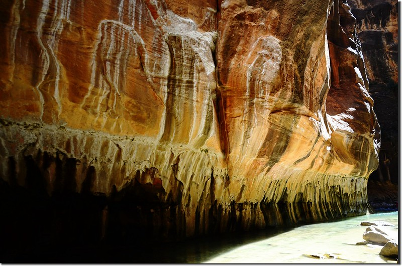 The Narrows, Zion National Park (26)