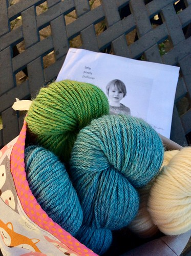 Handknitting wool yarns in Byneedleandthread bag for child size sweater