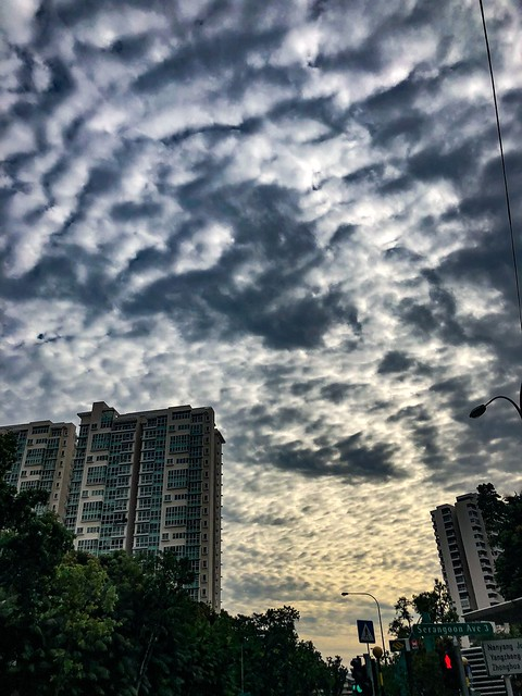 Cloudy Skies in Singapore #cloudy #skies #singapore #lorongchuan