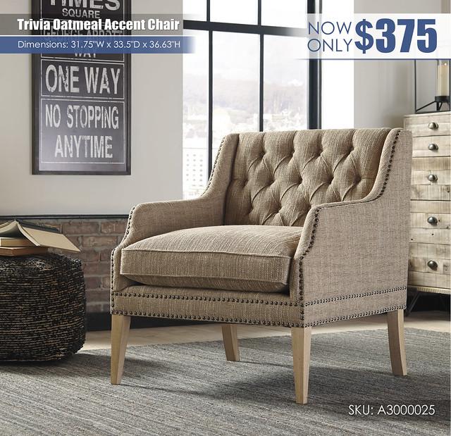 Trivia Accent Chair_A3000025