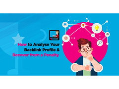 Backlink Profile Analysis Made Easy How To Recover From Penguin