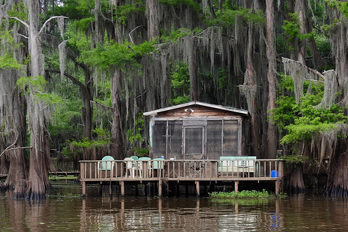 uncertain uncertaintx texas usa outdoor landscape landscapes caddolake lake water tree trees cypresstree reflection green spring tillandsiausneoides spanishmoss forest woods river canals house cabin porche summercabin houses