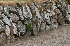 Mauern - Walls