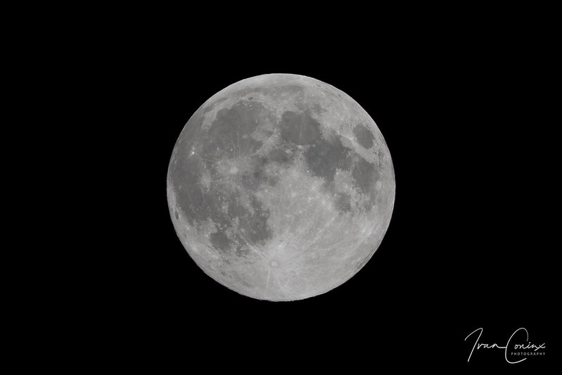 Moon – Mechelen – 2018 06 28 – 01 – Copyright © 2018 Ivan Coninx