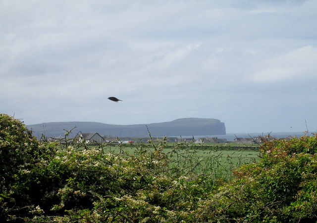 Dunnet Head from Castle of Mey