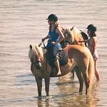 20180704-164135 Ostsee Fehmarn - Reiter und Pferde