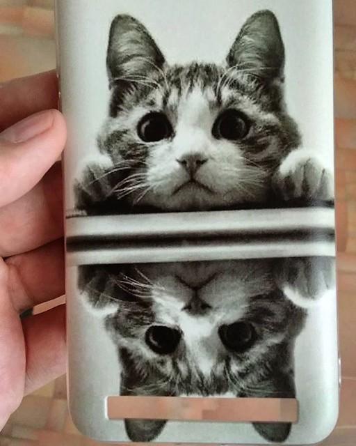 Приехал заказ - чехол для телефона. С котиком. Я не мог его не купить, он такой милый :-)