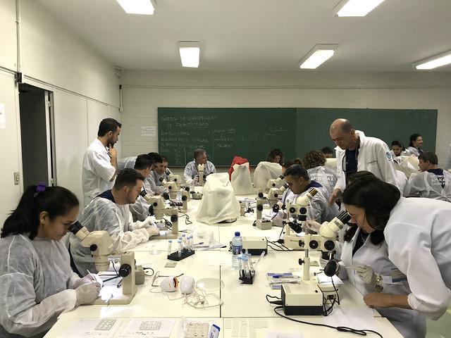 Aula presencial da turma da Capacitação de Entomologia aplicada à Saúde Pública