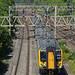 London Northwestern Railway 350118 - Tring