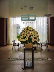 EB hotel-9339