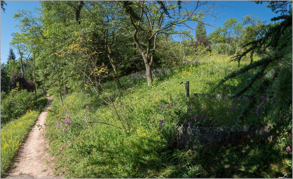 Jardin botanique Saverne: le jardin 28221685807_d69675f0e5_b