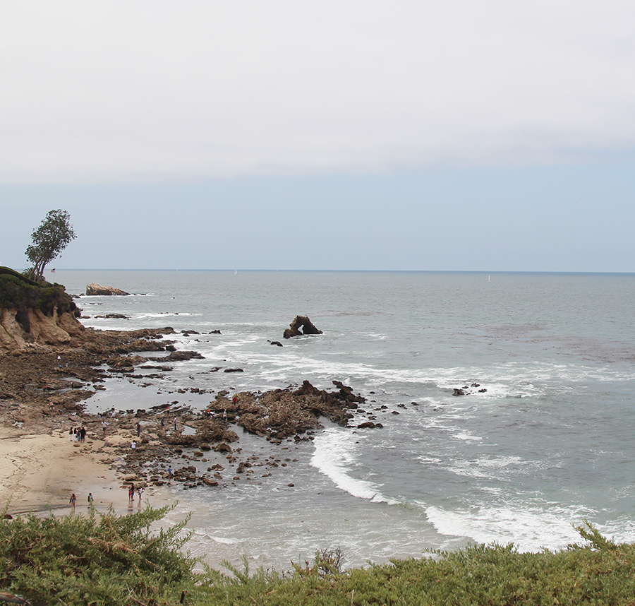beach-morning-9
