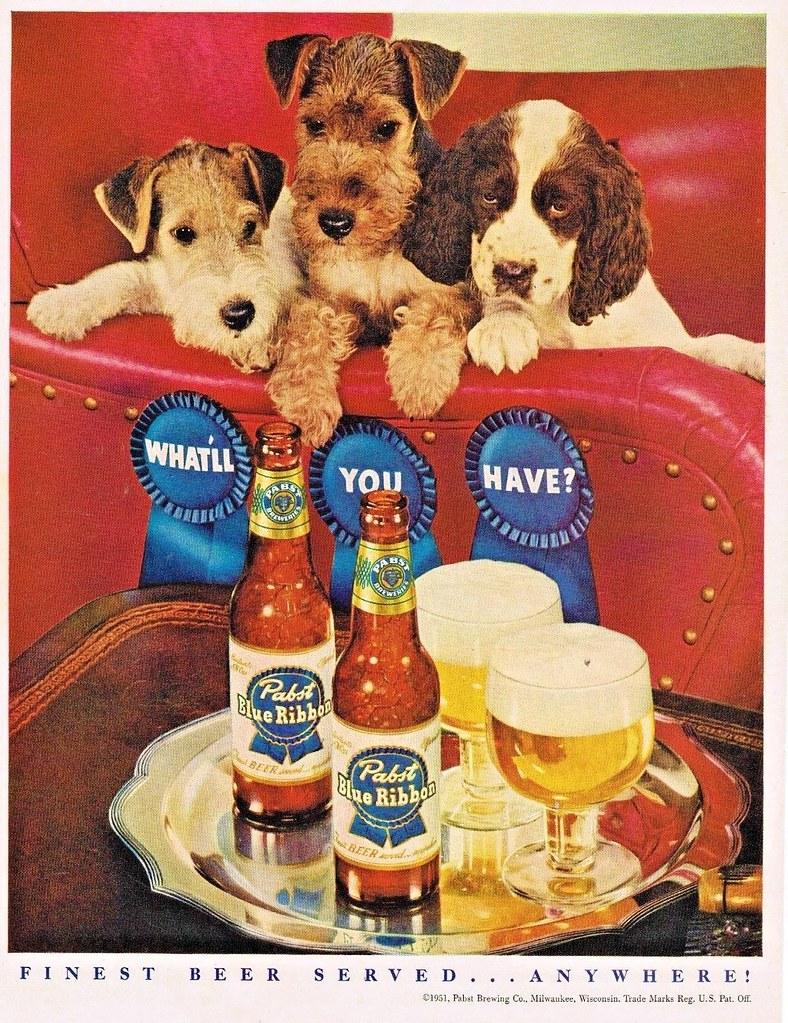 pbr-1951-puppies