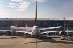Lufthsansa A380