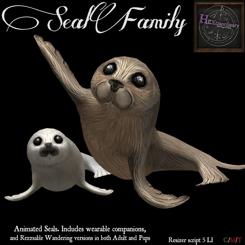 Seal Family! - TeleportHub.com Live!