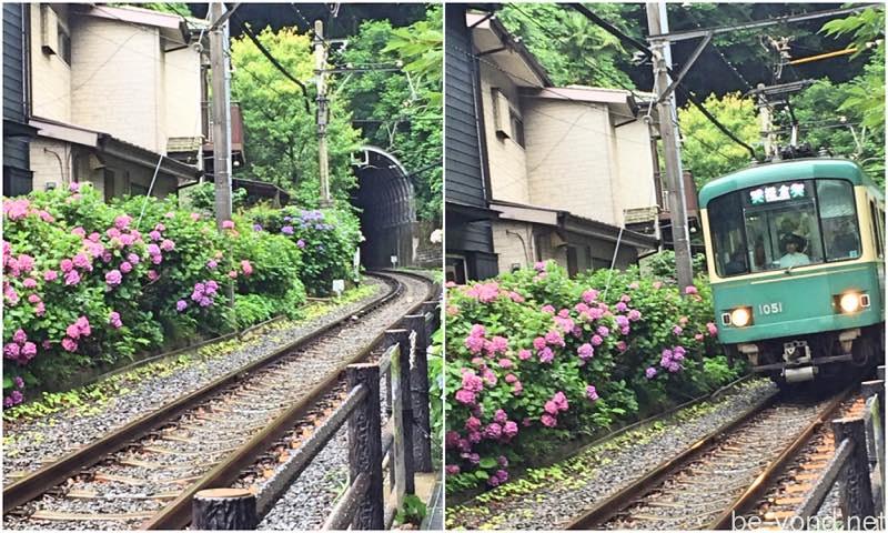 th_sakanoshita05