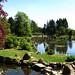 Japanese Garden, Cowden Castle 6.vii2018 6