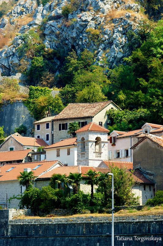 Фрагмент Старого города Котора с доминирующей колокольней монастыря