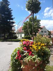Blumen zur Begrüßung beim Wilfinger Thermal Biodorf