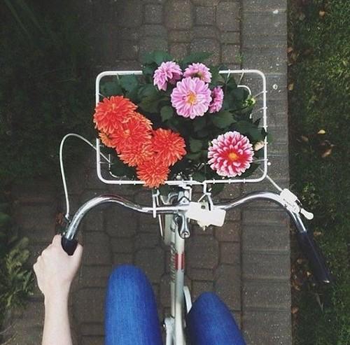 Wild Flowers: Biking + flowers = spring